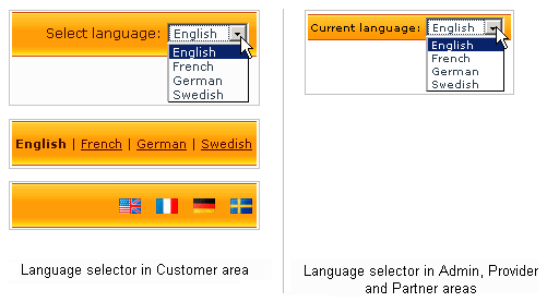 Managing languages 01.png